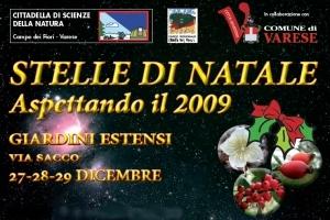 Manifestazione Stelle di Natale